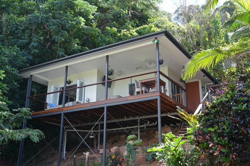 Rainforest living